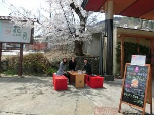 湯沢も桜が満開です。