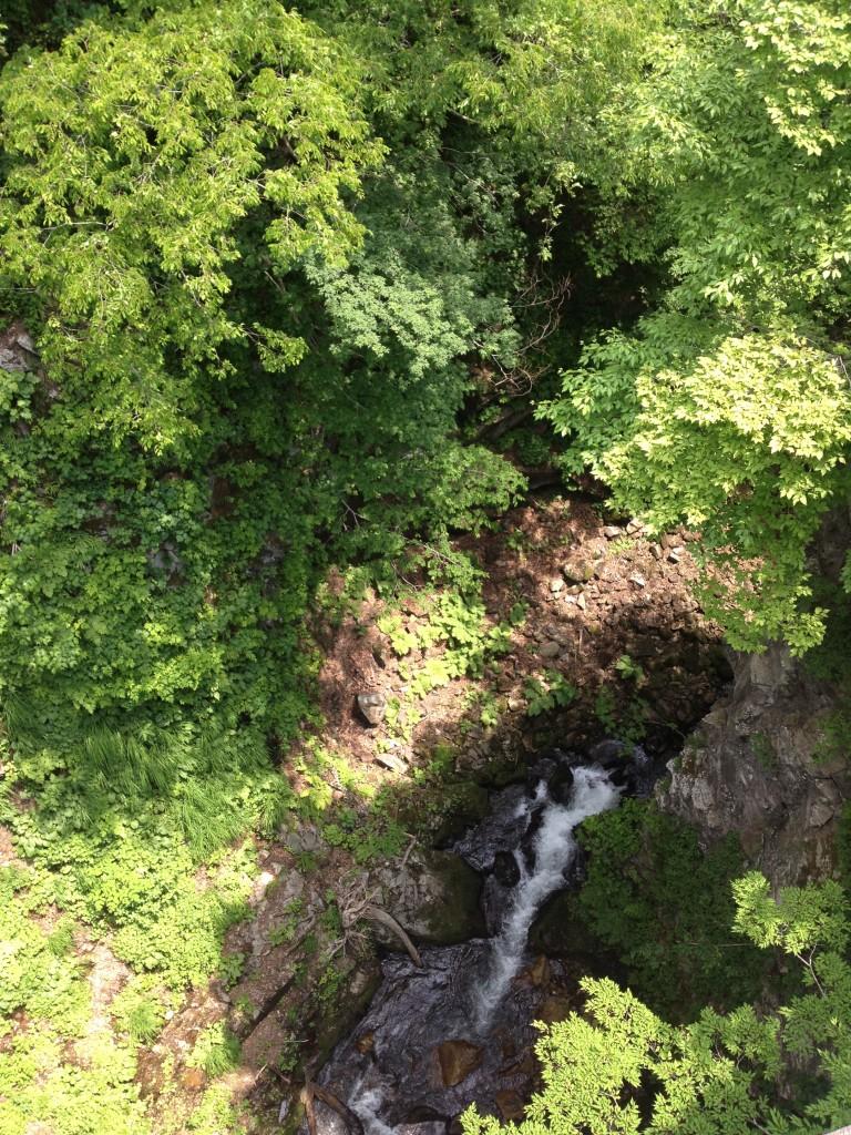 大源太の道路橋から見る四十八滝