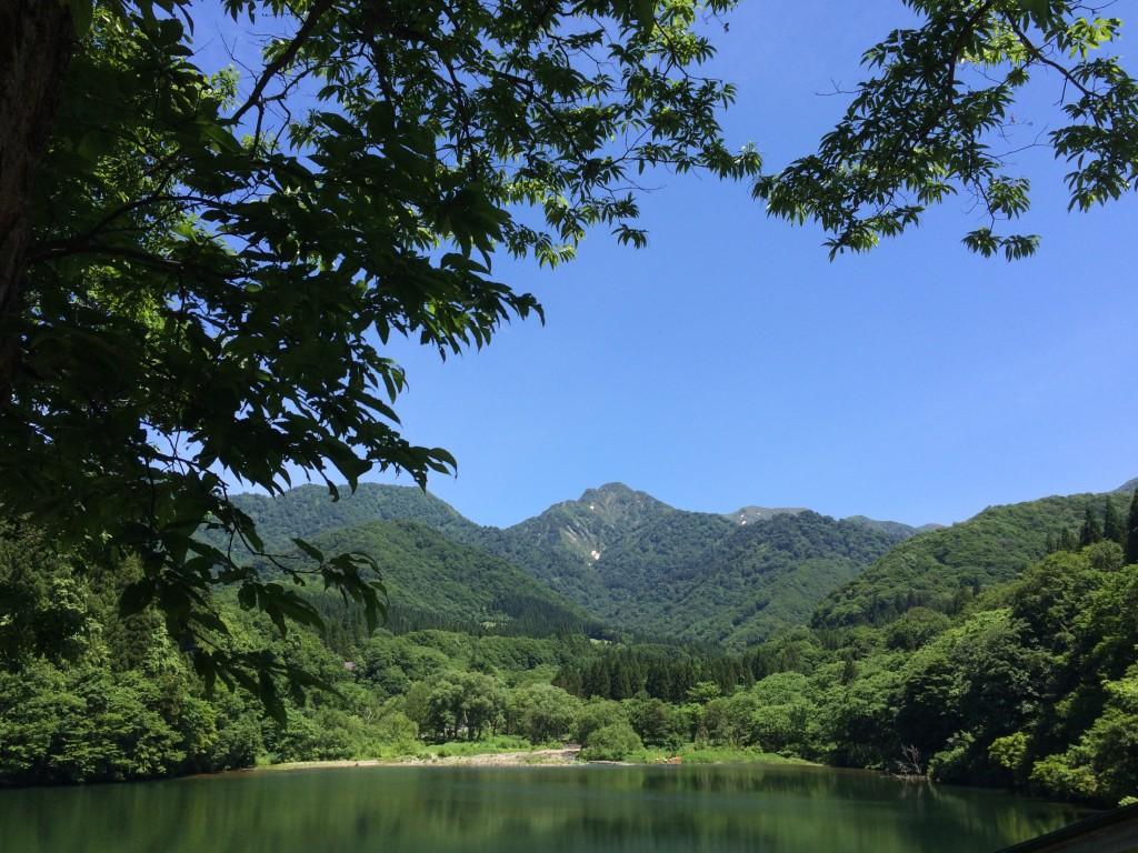 初夏の訪れin大源太